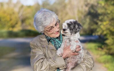 5 Things Seniors Need To Ask Before Adopting A Pet